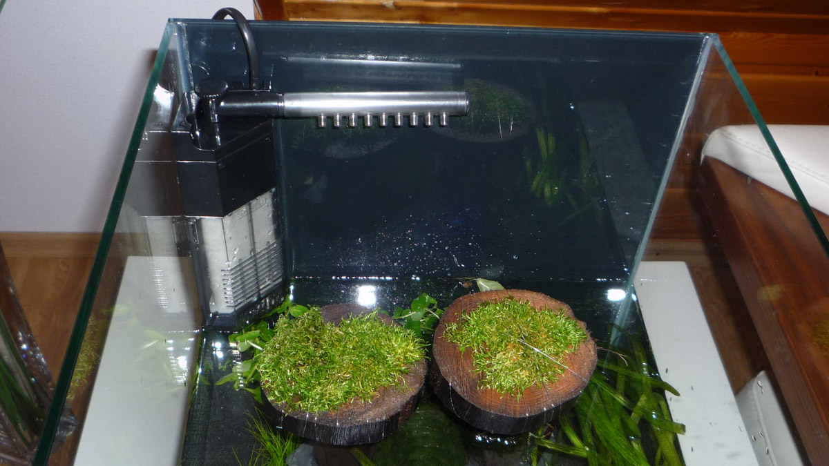 Innovativ Nano-Aquarium Filter installieren RZ63