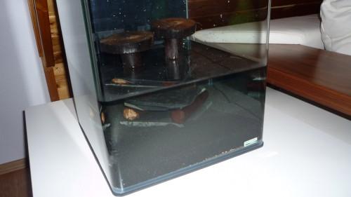 Aquarium zur Hälfte mit Wasser befüllt