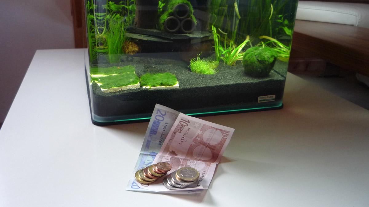 laufende aquarium kosten was kostet ein nano aquarium. Black Bedroom Furniture Sets. Home Design Ideas