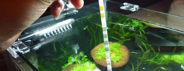 Aquarium Wasserwerte messen – PH, KH, GH, Nitrat und Nitrit mit JBL EasyTest 5in1