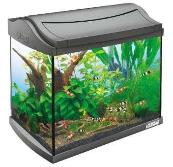 Tetra AquaArt Aquarium