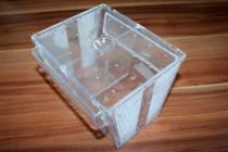 Ablaichkasten mit Deckel: muss nicht unbedingt bei eiertragende Garnelen sein!