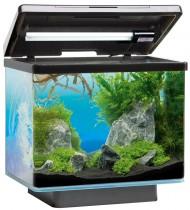 JUWEL Vio 40 Nano-Aquarium