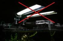 Aquariumbeleuchtung abschalten