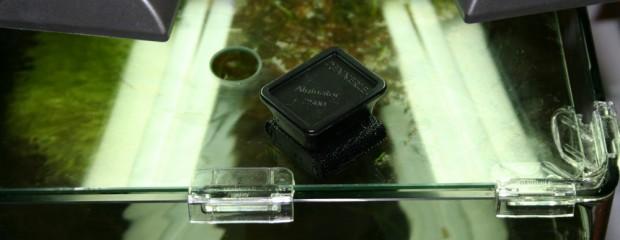 Aquarium Scheiben von Algen befreien mit dem Dennerle Alginator 2500