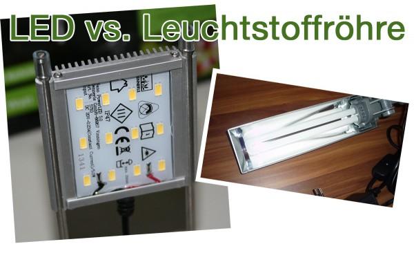 LED vs. Leuchtstoffröhre