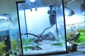 Aquael Shrimp Set Bodengrund